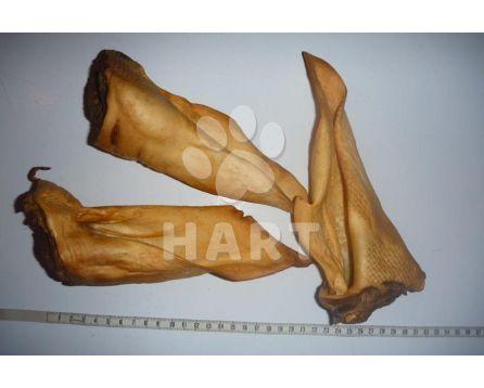 Jelení ucho sušené(extrudované) hnědé, zauzené   1ks
