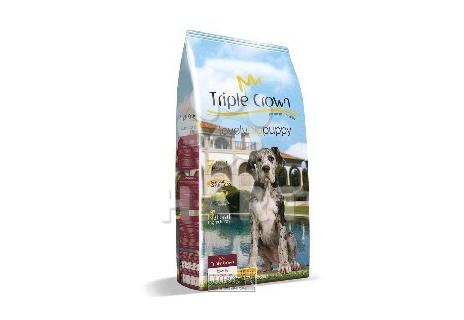 TRIPLE CROWN  dog – Lovely BIG puppy (štěňata velkých a obřích plemen, březí a kojící feny) 20kg