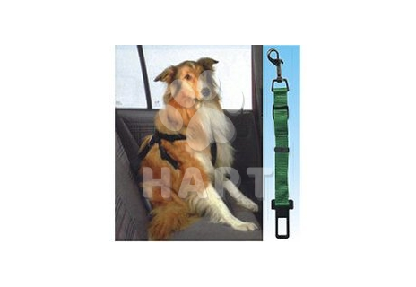 Bezpečnostní pás do auta / různé barvy popruhu/ univerzální velikost