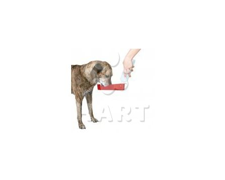Cestovní láhev na vodu pro psa  700ml                      1ks