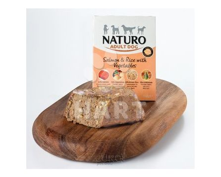 Naturo Adult Salmon&Rice with Veget 150g