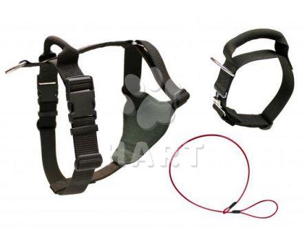 Služební postroj popruhový s uchem č.2  ,pro obv.hrudníku 70-90cm                                1ks