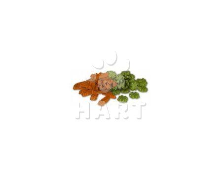 Pamlsky CARROT CLOVER MIX - mrkvičky a čtyřlístky pro hlodavce 100g