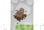 GUSTO 360 Adult cat mix hovězí, kuřecí, zelenina  20kg