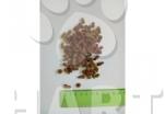 GUSTO 360 Adult cate mix králík,krůta, zelenina  20kg
