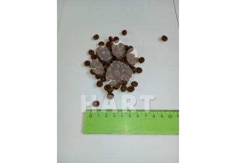 KIRAmore CAT ADULT MAINTENANCE OUTDOOR 1kg
