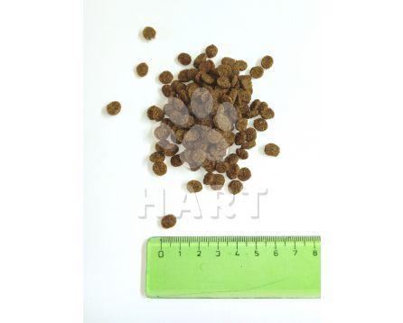 SALUTE 360 cat Steri•Lite (kastráti)     1kg