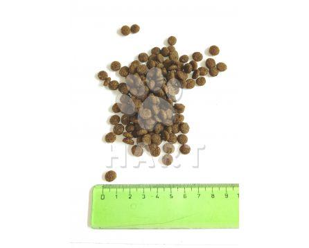SALUTE 360 mini adult JELEN+kukuřice 1kg