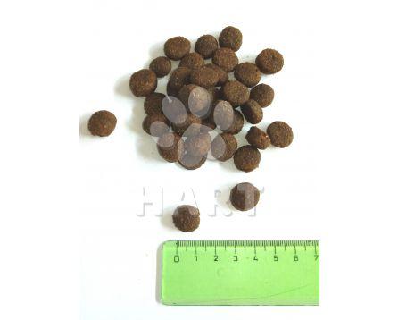 SALUTE 360 adult RYBA  med/maxi  1kg
