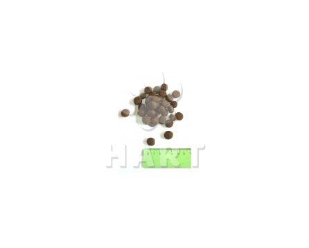 SALUTE 360  adult JELEN med/maxi 1kg