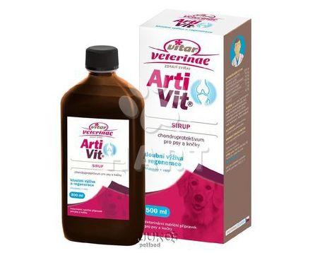 ARTIVIT Sirup - kloubní výživa  200ml - AKČNÍ CENA -