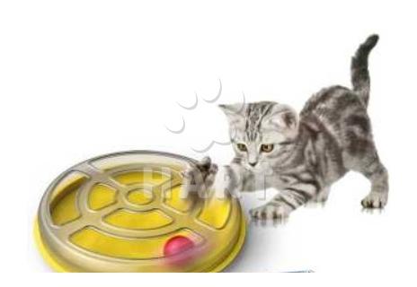 Hračka LABYRINT pro kočky plastová prům.29cm x výška 5cm