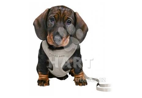 """Postroj na štěňata a velmi malé psy - """"vestička"""" JUNIOR puppy souprava, vel. 26-34cm/10mm + vodítko 2,00m/10mm, šedá barva"""