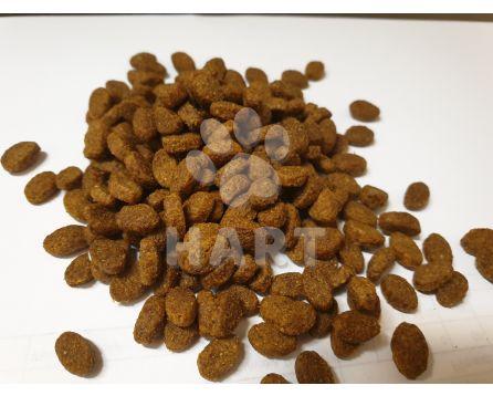 ELIZABETH'S KITCHEN adult CHICKEN(s kuřecím) mix flavor  1kg